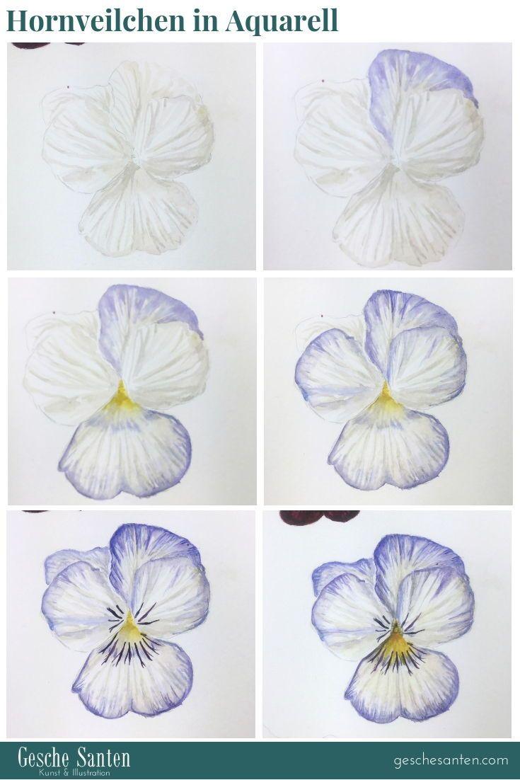 Pin Auf Botanische Illustrationen