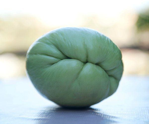 Growing chayote squash: All you need is one fruit. Just one more article about this nutritious vegetable, how it grows, and what a crop it produces. Lots of recipes on the Internet.