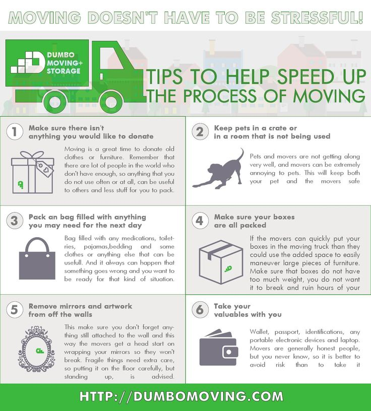 Dumbo Moving And Storage NYC   Moving Infographics
