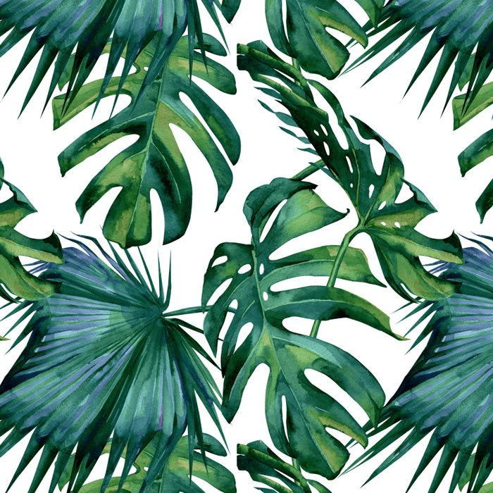 Classic Palm Leaves Tropical Jungle Green Duvet Cover Green Art Print Green Art Palm Leaves Cheap painting & calligraphy, buy quality home & garden directly from china suppliers:modern green tropical leaves canvas prints paintings pop wall art posters pictures on canvas for living room home decorative enjoy free shipping worldwide! classic palm leaves tropical jungle