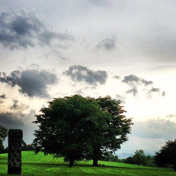 #六花の森 #帯広 #tree #緑 #green #北海道 #日本 #japan #風景写真