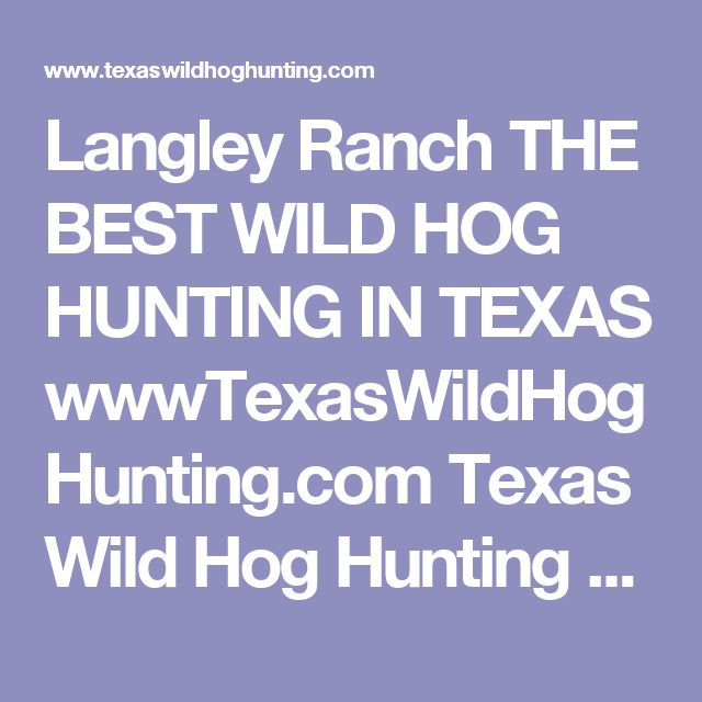 Langley Ranch THE BEST WILD HOG HUNTING IN TEXAS wwwTexasWildHogHunting.com Texas Wild Hog Hunting East Texas Wild Boar Hunting. Houston Hog Hunting Dallas Hog Hunting, Centerville Texas, Hog Hunting At Its Best, Wild Hog Hunts, Cheap Hog Hunts, Trophy Bo