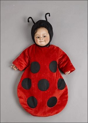Ladybug Baby Bunting Costume