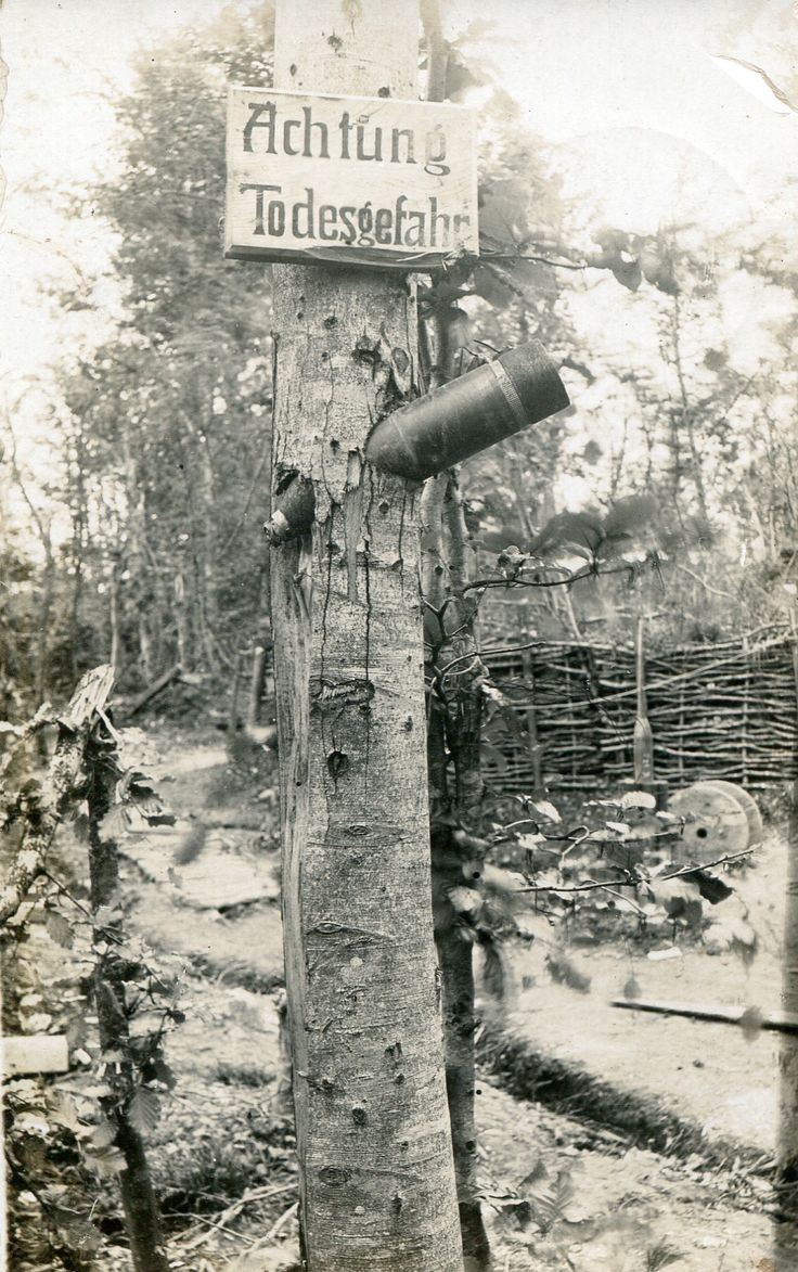 WW1. Poignant Real Photo Postcard of a Danger Zone sign on dud-pierced tree…