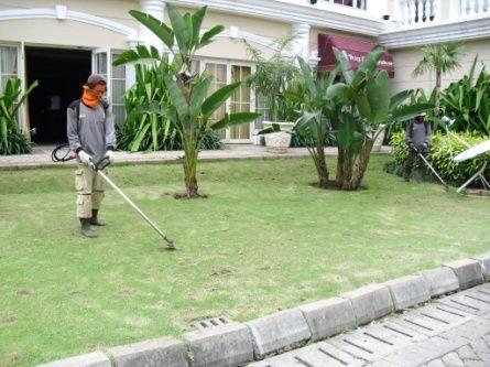 Landscaping Biosis