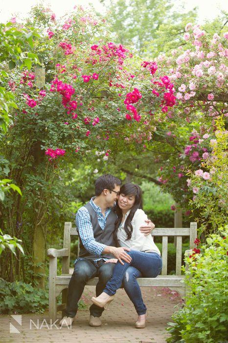 Chicago botanic gardens engagement picture rose garden dreamy pink glencoe il