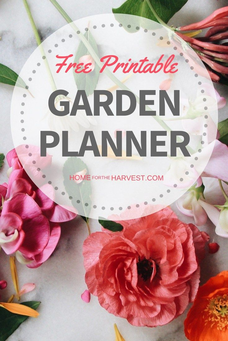 Flower garden layout planner free - Download Your Free Garden Planner This Printable Is The Perfect Way To Get Started Gardening