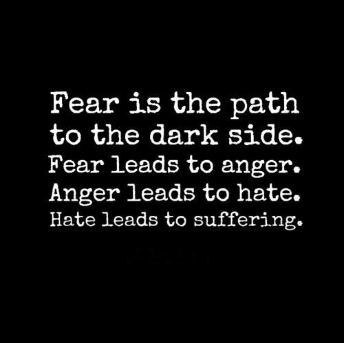 Fear is the path to the dark side. Fear leads to anger ...