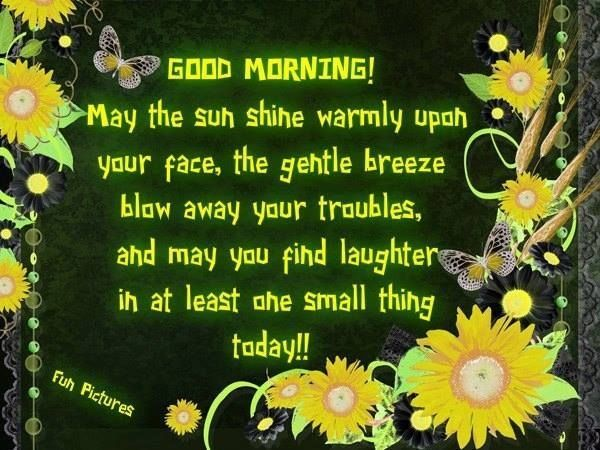 Good Morning! May the sun shine warmly upon your face, the gentle breeze blow away your troubles, and may you find laughter in at least the small thing today!!