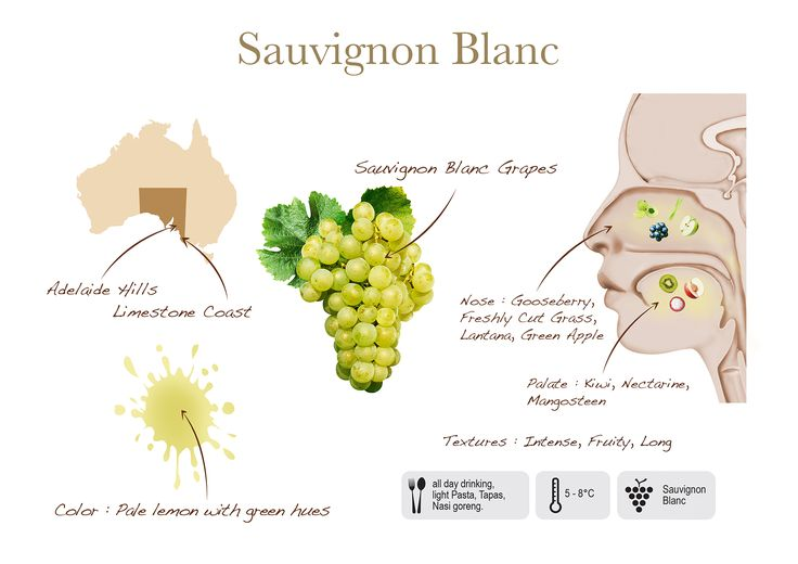 Sauvignon Blanc by Two Islands, visual presentation