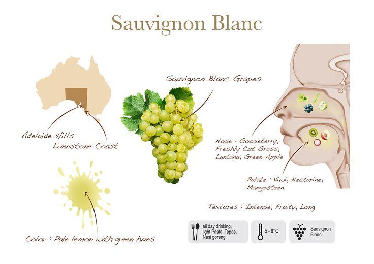 Sauvignon Blanc by Two Islands, visual presentation