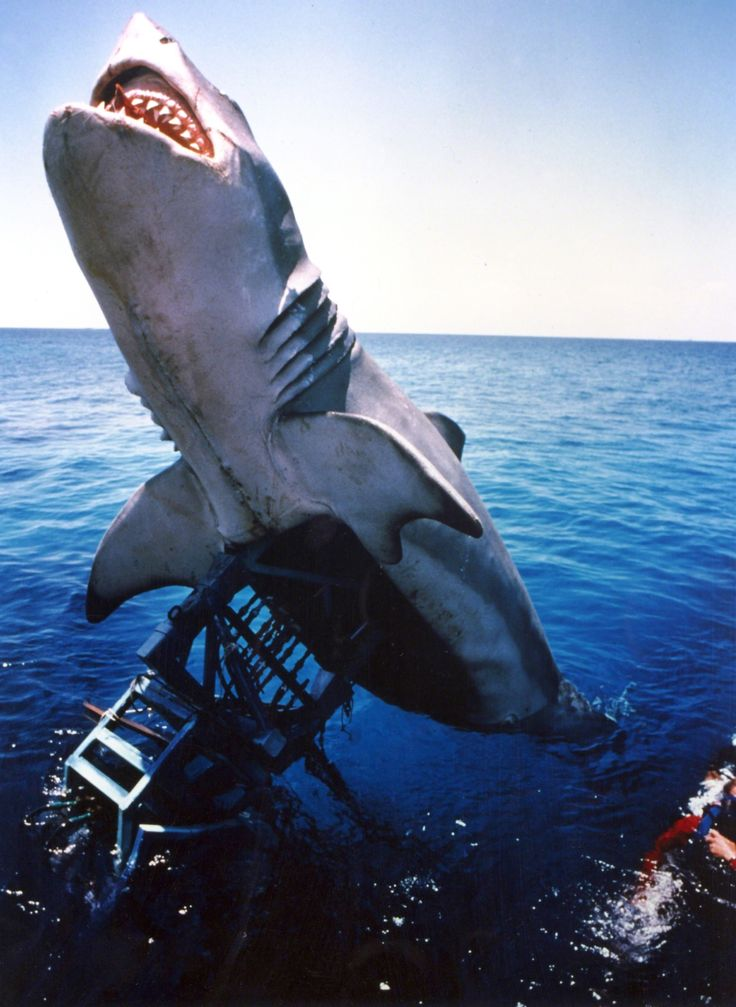 Jaws [1975] #BehindTheScenes