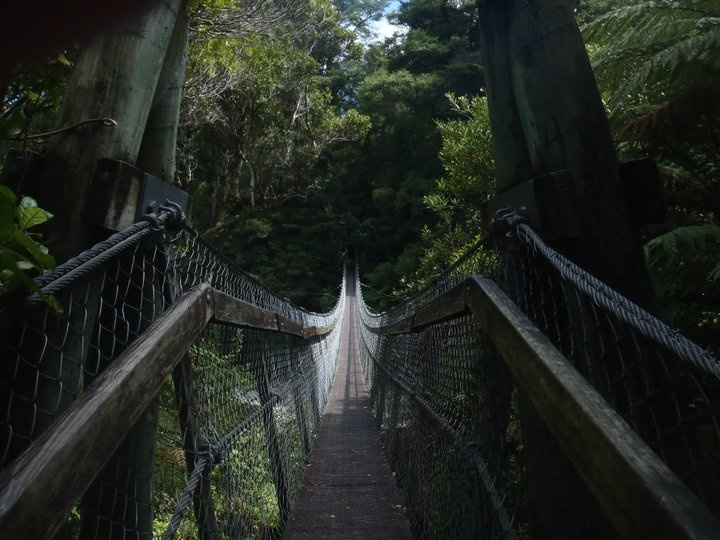 Swing bridge, Wellington, NZ