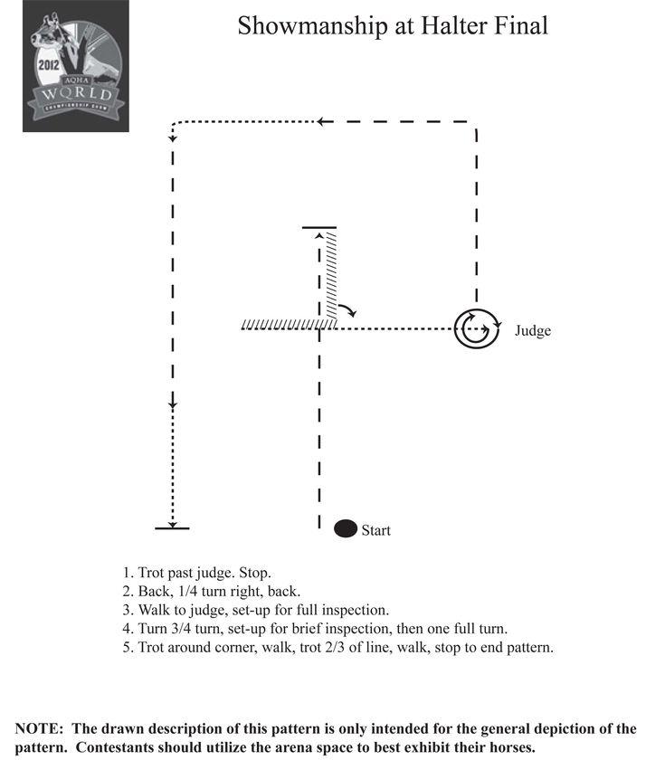 Practice the 2012 AQHA World Championship amateur showmanship pattern at home…
