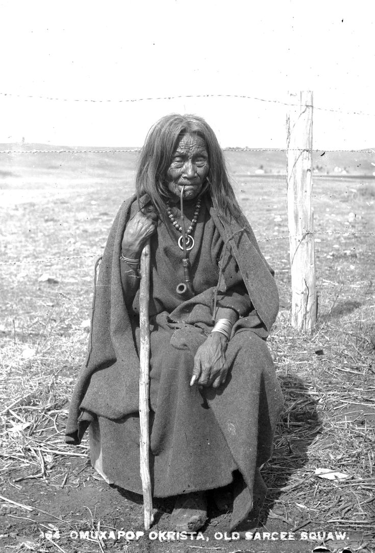 This Picture gives us an idea on how the Sarcee Indians lived and looked like in the 1880s and 1890s, via Flickr. Description from pinterest.com. I searched for this on bing.com/images