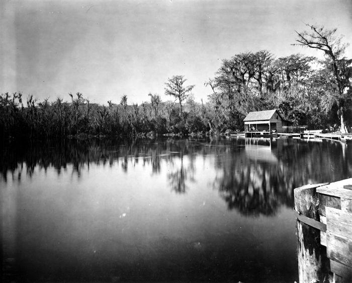 Silver Springs, Florida   ca.1894