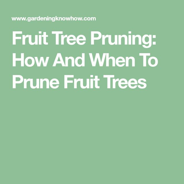 Fruit Tree Pruning: How And When To Prune Fruit Trees