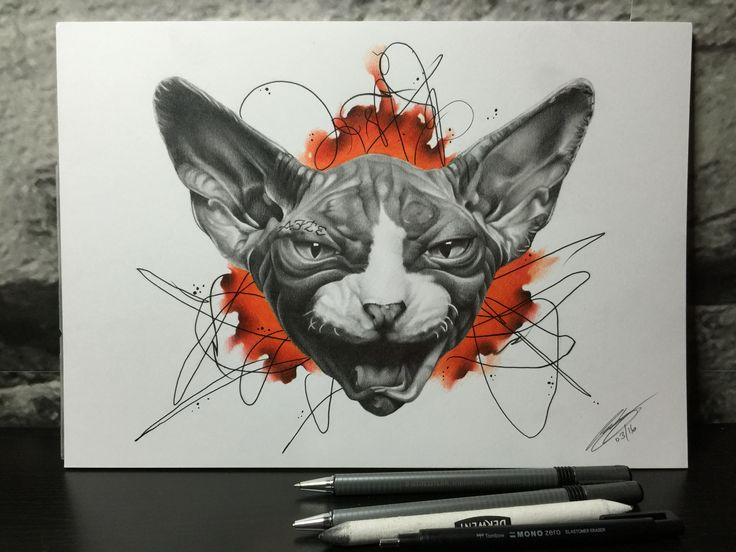 Sphinx cat pencil drawing just completed
