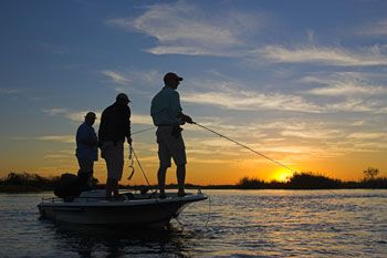 The Zambezi and Chobe offers every fisherman wonderful opportunities. Sekoma Island Lodge is situated on the Zambian side of the Mambova Rapids on a stretch of river that experiences annual flooding.