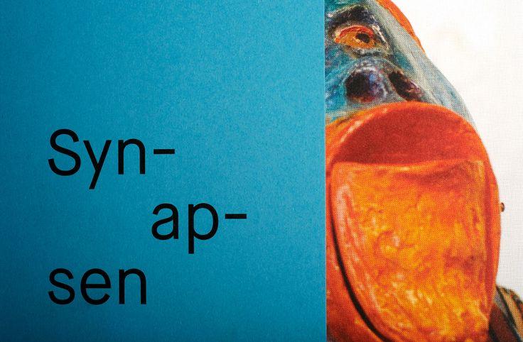 Shop : Syn-ap-sen