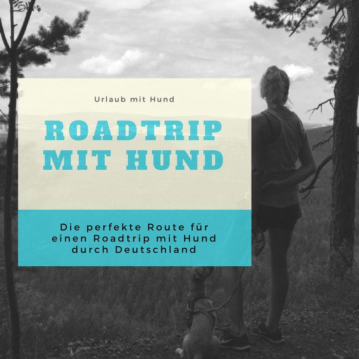 Roadtrip mit Hund durch Deutschland - Urlaub mit Hund - die perfekte Route durch Deutschland