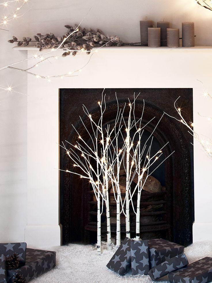 Indoor Outdoor Light Up Birch Tree - Cluster | Cox & Cox