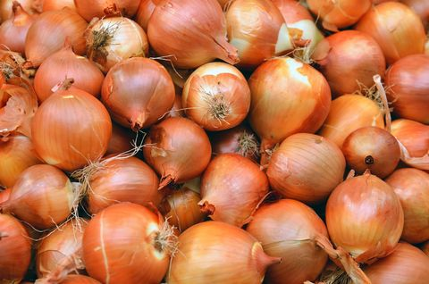 Onion as Cold Remedy