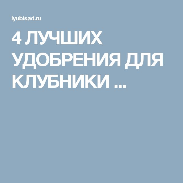 4 ЛУЧШИХ УДОБРЕНИЯ ДЛЯ КЛУБНИКИ ...