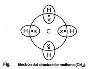 Carbon and its Compounds Class 10 Notes Science Chapter 4