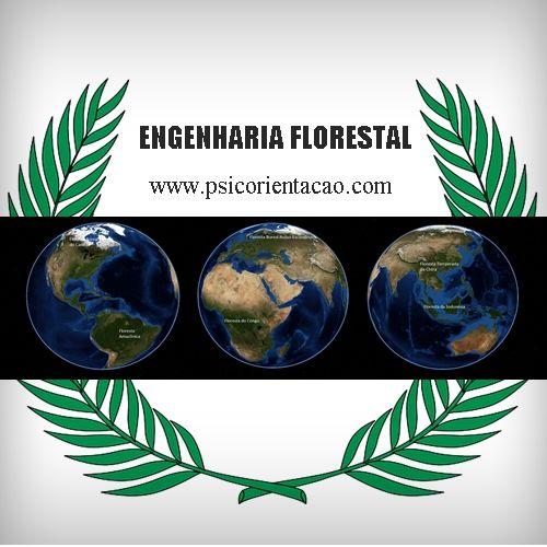 ENGENHARIA FLORESTAL – Estudo, avaliação, planejamento, utilização de recursos naturais que vise respeitar os limites da natureza.        Atuação: Ecologia aplicada, educação, fiscalização, manejo florestal, tecnologia de produtos florestais