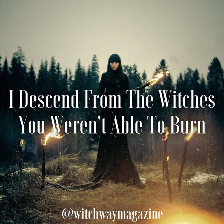 45 Best Witch Memes Images On Pinterest