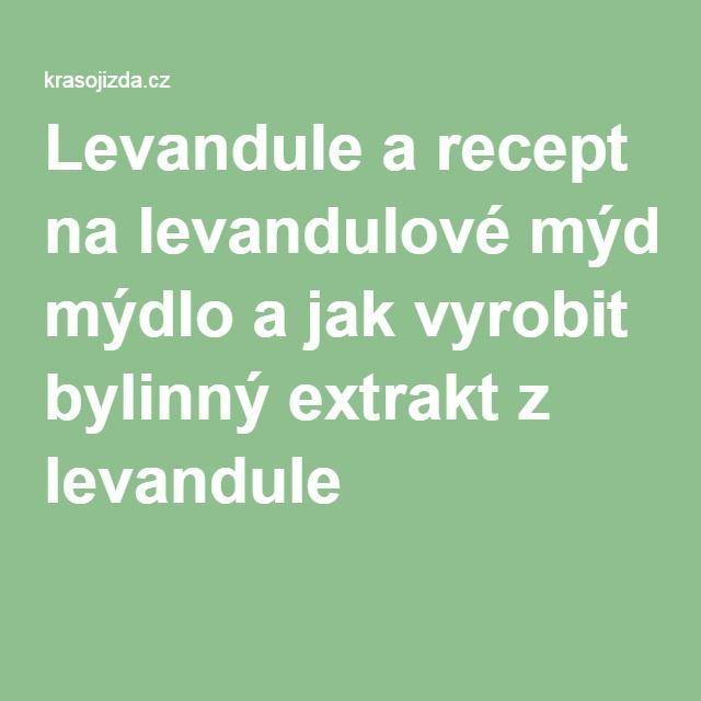 Levandule a recept na levandulové mýdlo a jak vyrobit bylinný extrakt z levandule