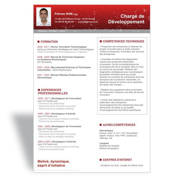 modele cv word charge de developpement planche