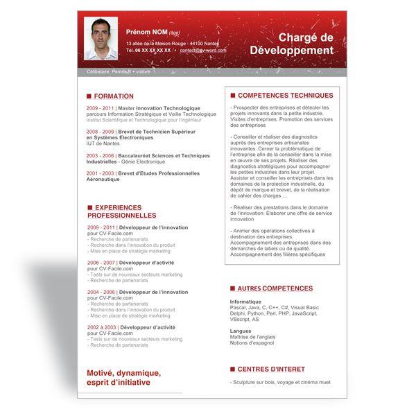 modele cv word charge de developpement planche