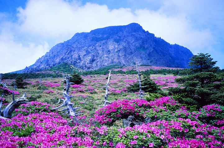 sejarah pulau jeju