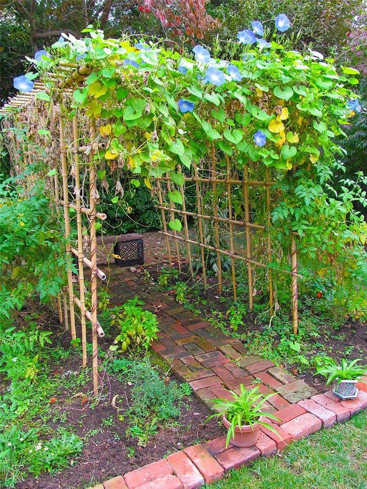 16 best my bamboo vegetable trellis arbor images on for Vegetable garden pergola