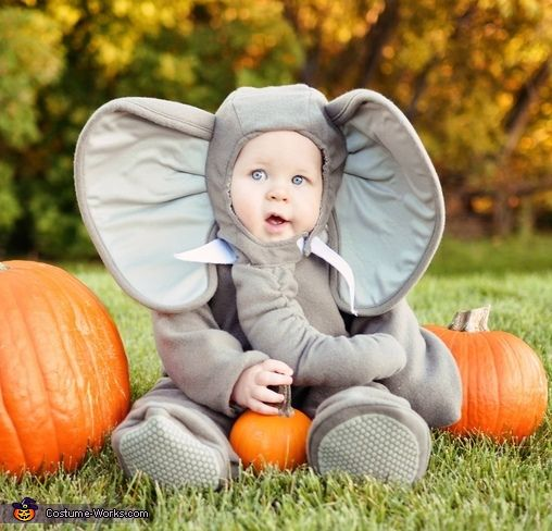 Cutest Little Elephant for Halloween; one day when I have a kid they will most certainly have to be an elephant! :)