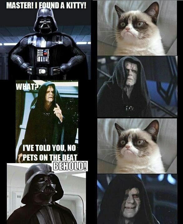 25 Times The Internet Made Star Wars Hilarious Star Wars Humor Star Wars Memes Star Wars Characters