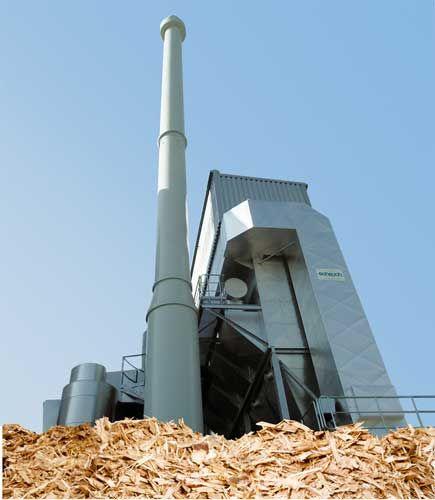 Centrali a biomasse: dubbi e potenzialità