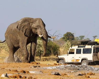 Botswana, Land Rover vs Elephant