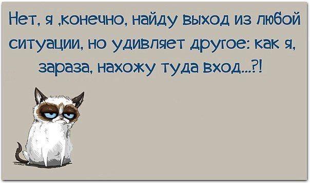 https://vk.com/feed?z=photo-25421850_437043691/album-25421850_00/rev