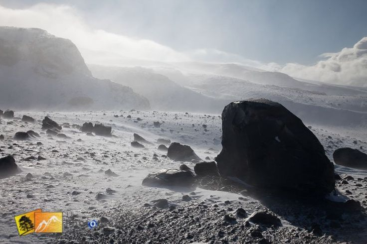 In the mountain snow blizzard. North Island New Zealand. http://www.thephotograph.co.nz/photo-galleries/north-island/