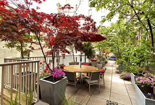Alberelli e piante sul terrazzo