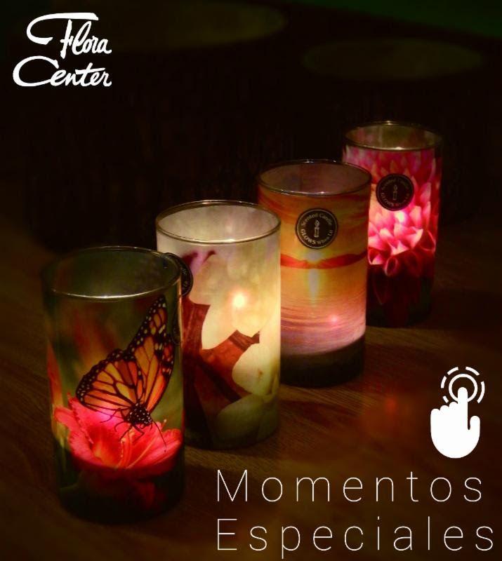 Más que iluminar - camilad@floracenter.cl - Correo de Flora Center