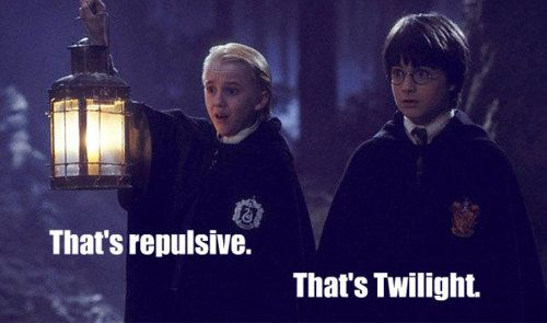 Draco and Harry find out why the forest is forbidden.