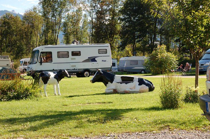 Camping in Bayern | Camping im Allgäu, Camping in Franken, Camping in Ostbayern, Camping in Oberbayern: Camper