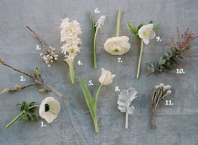 January flowers: 1. Anemone // 2. Magnolia Bud // 3. Tallow Berry // 4. Hyacinth // 5. Tulip // 6. Muscari // 7. Ranunculus // 8. Dusty Miller // 9. Hellebore // 10. Acacia // 11. Silver Brunia