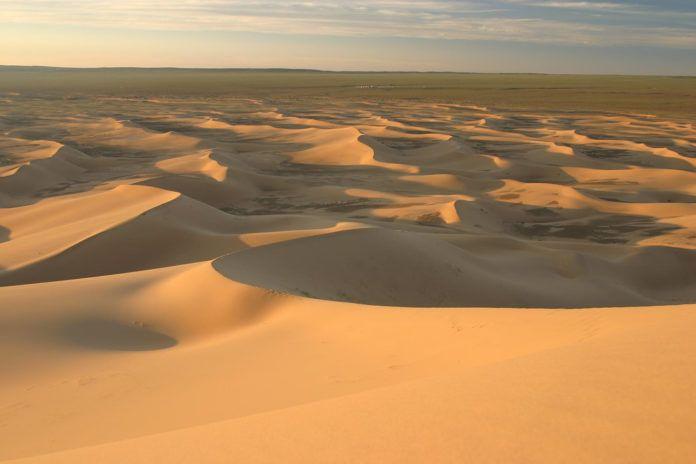 Gobi Desert (6)