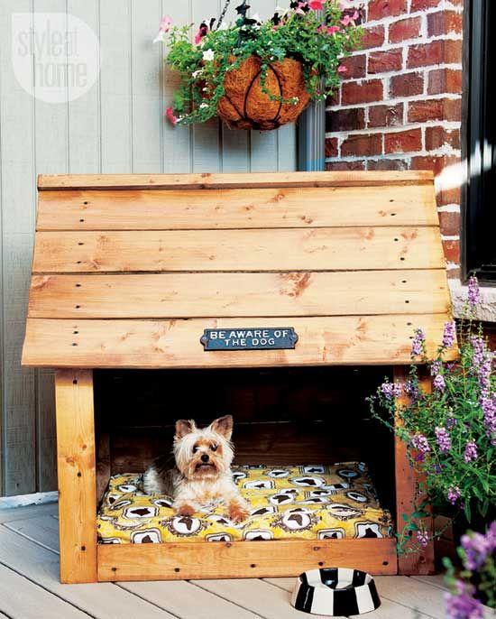 Stylish Backyard Retreat for your dog