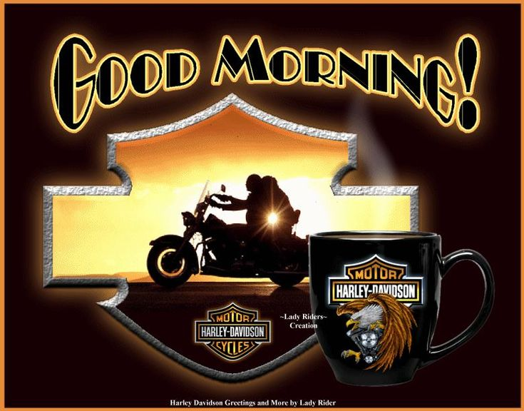113449474 Happy Birthday besides For Lifetime Ride Motorcycle moreover Biker Quotes in addition Icon 20logo likewise Inspirational Quotes Dirt Bike. on harley davidson weekend quotes